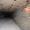 В Кривом Рогу продается шахта известняка - Изображение #1, Объявление #719652